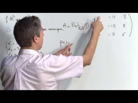 Exercice 3 (Matrice d'une application linéaire) [02433]
