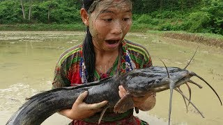Survival skills - skills Catch giant catfish by hand and Cooking fish recipe - Eating delicious