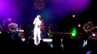 Video Plastic Swans - Tyger (Trutnov 2012)
