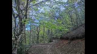 preview picture of video 'Carrera de Montaña Luesia 2014'