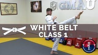 Taekwondo Follow Along Class - White Belt - Class #1
