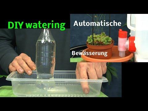 Automatische Bewässerung von Pflanzen DIY watering plants with bottles