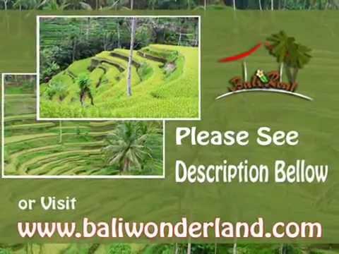 Fantastic Property 600 m2 Lahan  View sawah  di Sentral Ubud TJUB437