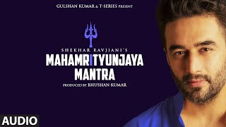 Mahamrityunjaya Mantra - Full Audio | Shekhar Ravjiani | Bhushan Kumar | T-Series - Download this Video in MP3, M4A, WEBM, MP4, 3GP