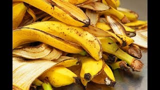 You Will Never Throw Away Banana Peels After Watching This   Kholo.pk