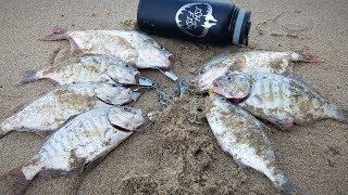 Fishing for surf perch in northern california