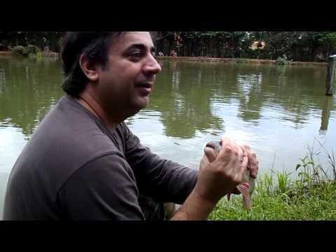 Pesca 2013 em Santa Cruz da Conceição.