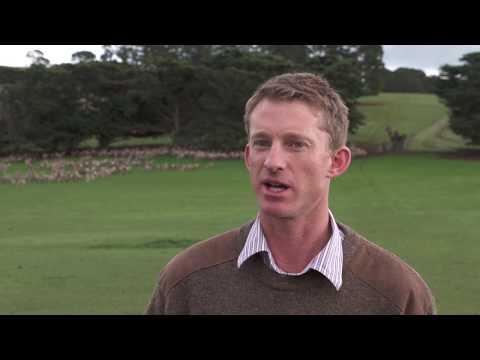 Geographical indications, Tasmania - Sheep