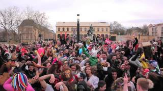 preview picture of video 'HARLEM SHAKE GÉANT À METZ - FRANCE (HD)'