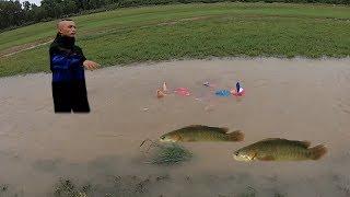 Rô Đồng Kho Khế - Đi Bắt Cá Những Ngày Mưa Bão Ngập Lụt và Cái Kết Cực Vui