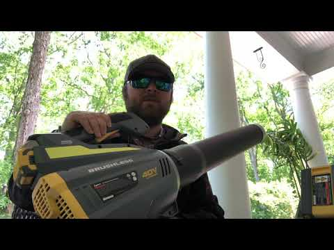 Lynxx 40 volt lithium ion battery powered leaf blower full review after 6 months