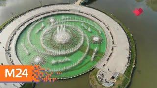 """""""Это наш город"""": ВДНХ вводит бесплатные часы посещения выставок по будням - Москва 24"""