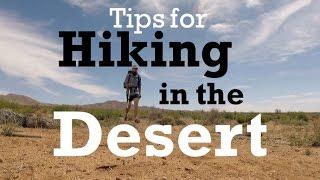Tips For Hiking In The Desert