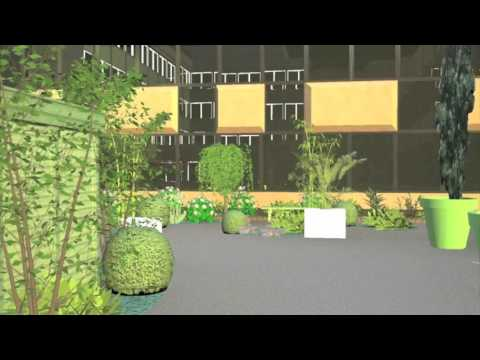 Mises en situations - Animations 291