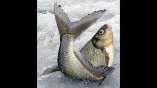 Секреты рыбалка на финский залив форум