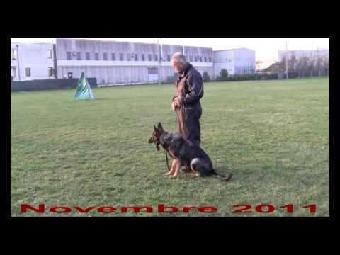 immagine di anteprima del video: Fanny dell´Agordino Novembre 2011