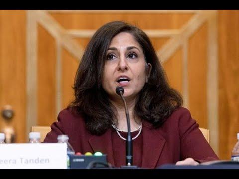 Clueless MSNBC Calls Neera Tanden 'Progressive Fighter'