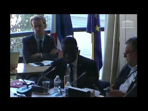 Intervention – Commission des Affaires européennes – Rôle des parlements nationaux