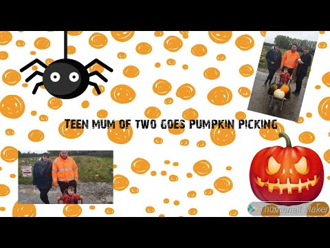 Teen mum goes pumpkin picking with two kids- Nan and toddler fall over & white pumpkins?