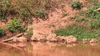 Segmentos de 26 municípios pertencentes à bacia, terão que pagar pelo uso da água.