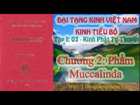 Kinh Tiểu Bộ - 039. Kinh Phật Tự Thuyết - Chương 2: Phẩm Muccalinda Chương