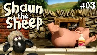 Download Video Shaun the Sheep - Pig Trouble S2E3 (DVDRip XvID) HD MP3 3GP MP4