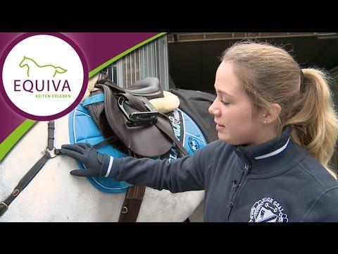 Springreiten - Die Ausrüstung für das Pferd