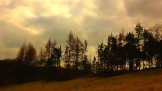 Avicii - The Nights (Felix Jaehn Remix) Music Video I LJP Digital Media