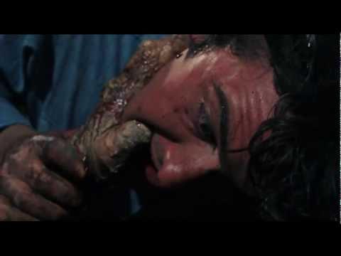 The Evil Dead (1981) Best Scenes: Evil Torments Ash