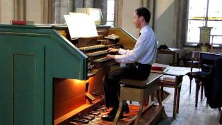 preview picture of video 'Oginski - Polonaise (Roman Jungegger,Orgel St.Othmar,Mödling)'