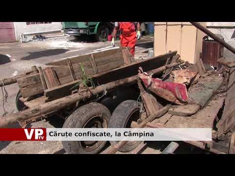Căruțe confiscate, la Câmpina