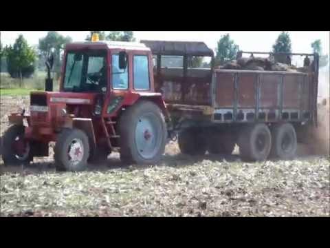 DDR Landmaschinen Miststreuen 2014 mit ZT300 und Weimar T174