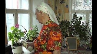Гарденотерапия для пенсионеров Троицка