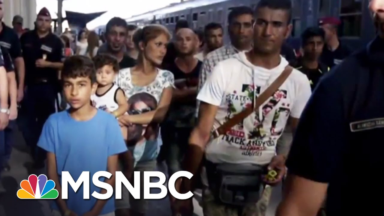 How Can You Help The Refugees In Europe? | MSNBC thumbnail