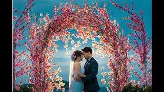 Troven & Richelle Wedding Highlights #trollielovewaits 17.01.17