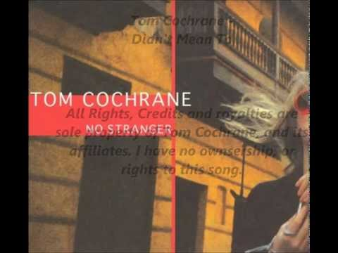 Tom Cochrane - Didnt Mean To Mp3