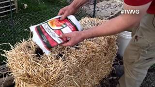 Prepping for a Straw Bale Garden Quick Tip