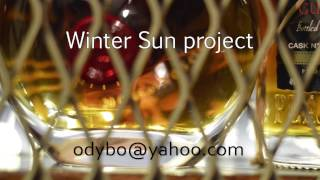 Winter Sun project