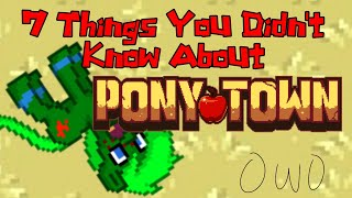 7 Things You Might Not Have Known About Pony Town