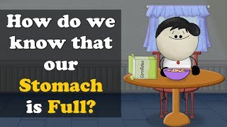 How do we know that our Stomach is Full? | #aumsum #kids #education #science #stomach