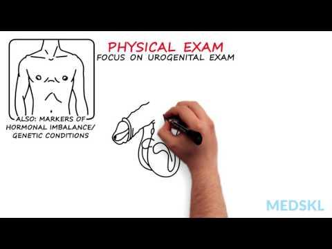 Video Methoden von Prostata-Massage