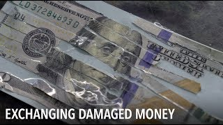 What happens with damaged U.S. dollars? | VOA Connect