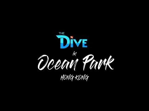 """Ocean Park ng Hong Kong, tampok ngayong Sabado sa """"The Dive"""""""