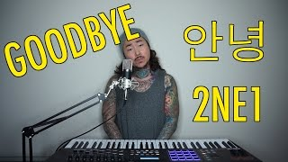 GOODBYE (안녕) – 2NE1 | Lawrence Park Cover