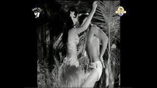 The Merrymen - BIG BAMBOO (Video) 1969  Lyrics