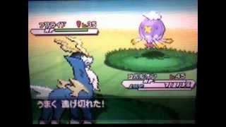 [Live!]ポケモンホワイト2・色違いコバルオンPokémonWhite2-shinyCobalion