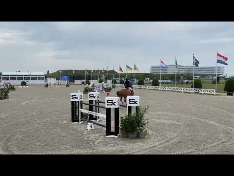 Super results for Eurohorse Riders at CSI5/3/2/1/yh1* Knokke