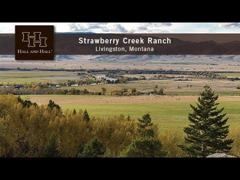 Strawberry Creek Ranch (Edit + Script)
