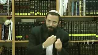48 הלכות שבת או''ח סימן שח סע' כה-ל הרב אריאל אלקובי שליט''א