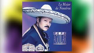 Me Vas A Extrañar   Pepe Aguilar Del álbum Lo Mejor De Nosotros